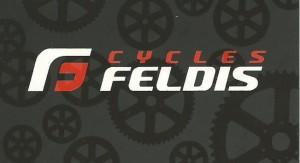 Logo Feldis